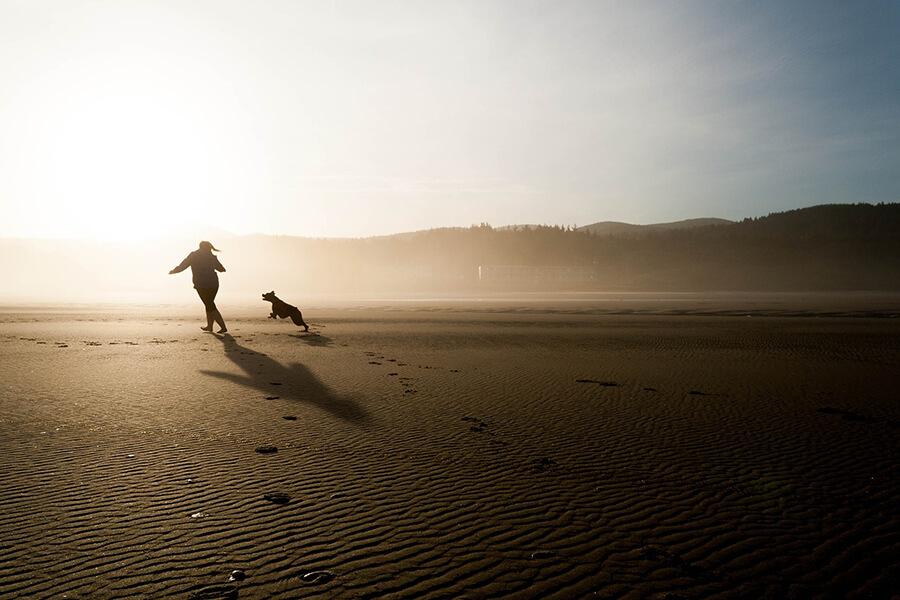 รับมือสุนัขกลัวเสียงฟ้าร้องด้วยการออกกำลังกาย