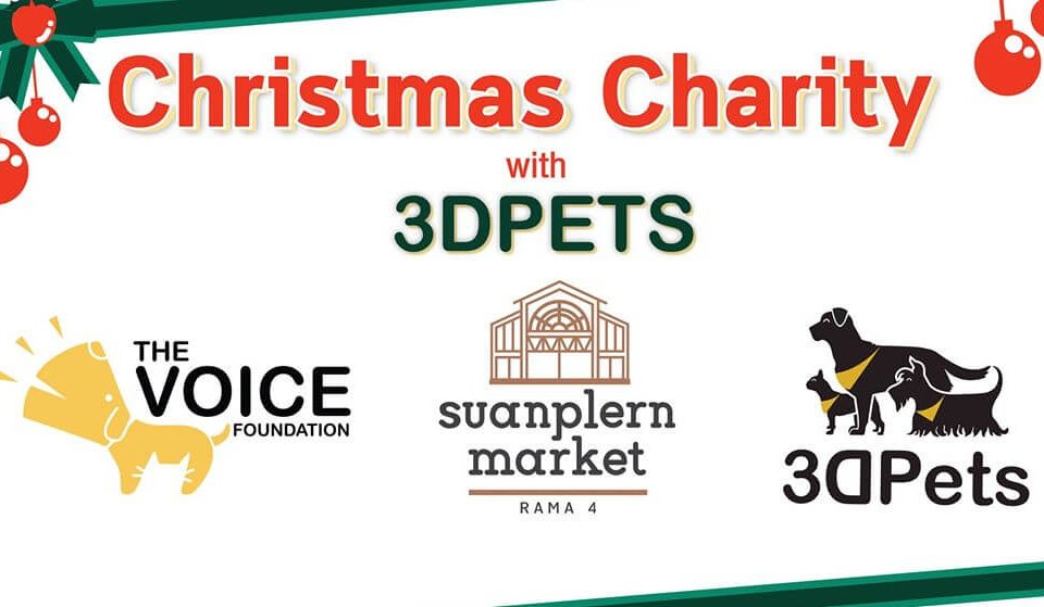 Christmas Charity with 3DPets