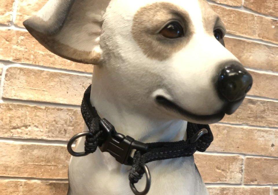 ปลอกคอสุนัข ผ้า wire fox