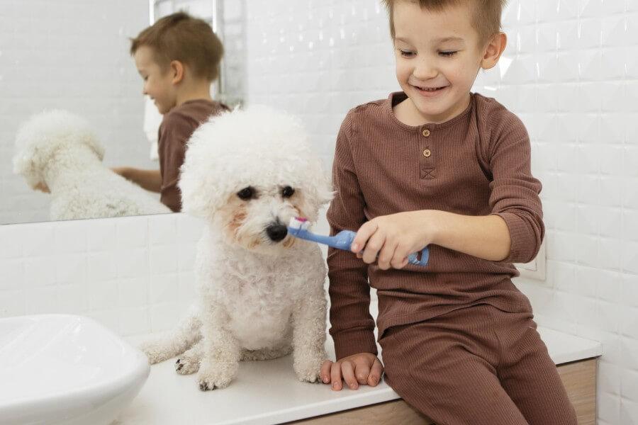 เลี้ยงสุนัขในบ้าน้องสะอาดไม่เว้นแม้กระทั่งช่องปาก